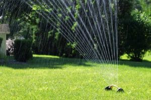 How Long to Water Your Lawn with Oscillating Sprinklers