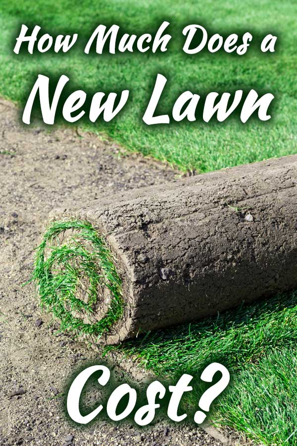 How Much Does A New Lawn Cost Garden Tabs