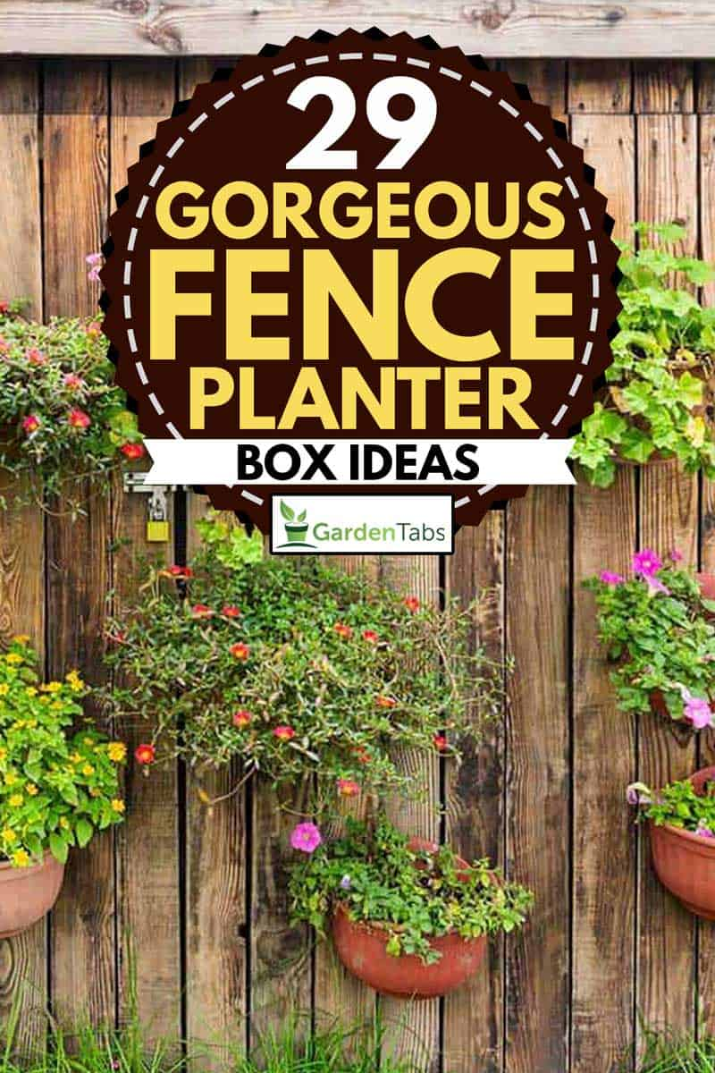 Vertical fence planter box with assorted flower plants,29 Gorgeous Fence Planter Box Ideas