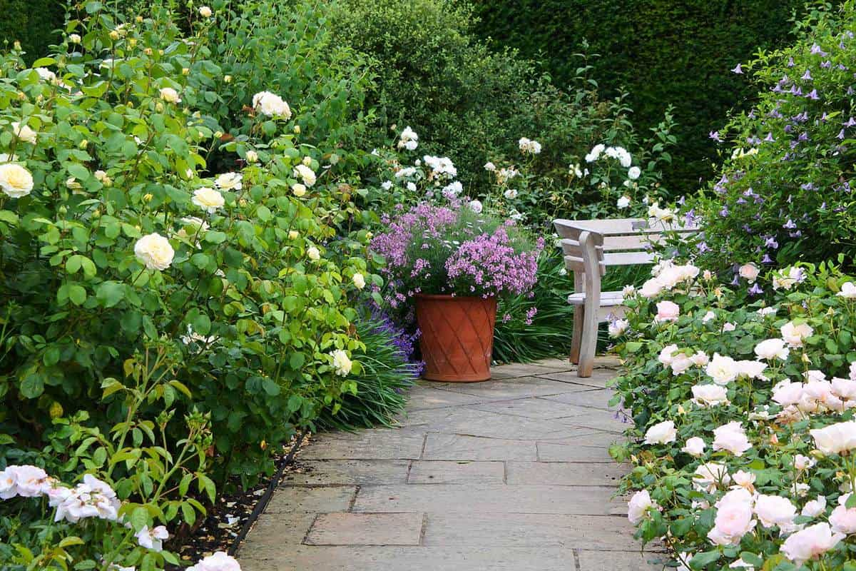 An ornate garden path bordered by flowering roses