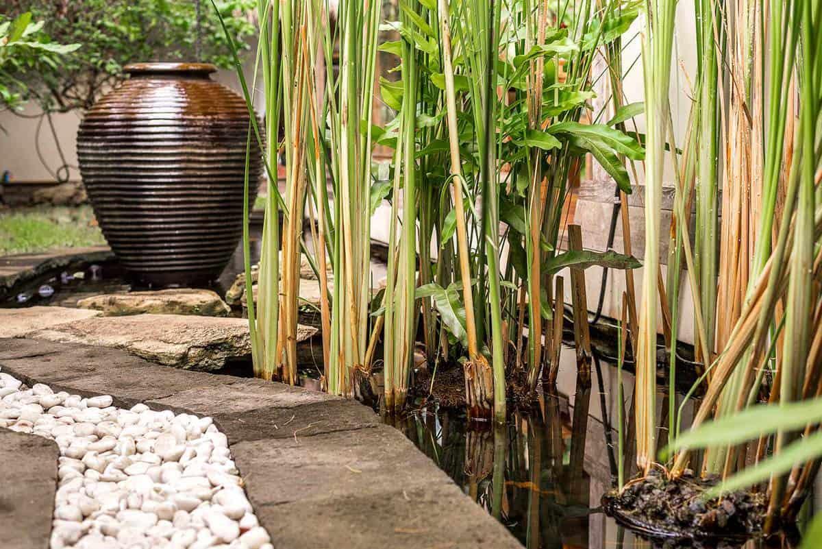 Bamboo footpath