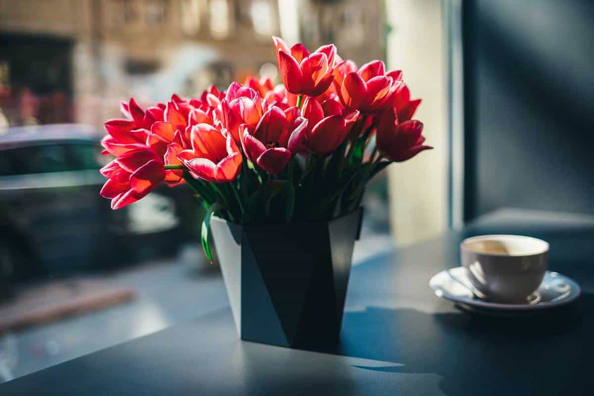 Bouquet-of-beautiful-red-tulip-flowers