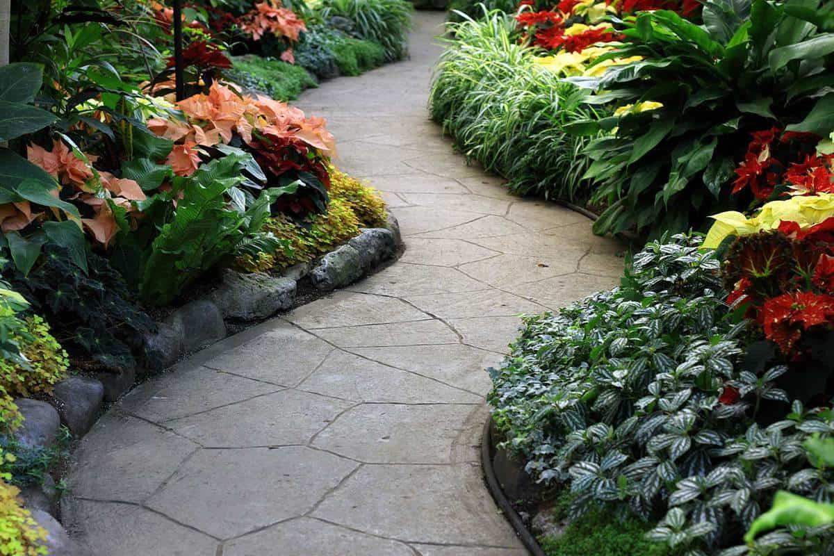 Christmas garden path