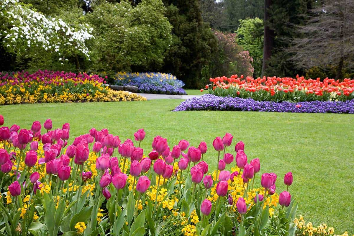 Colorful garden landscape and grassy lawn