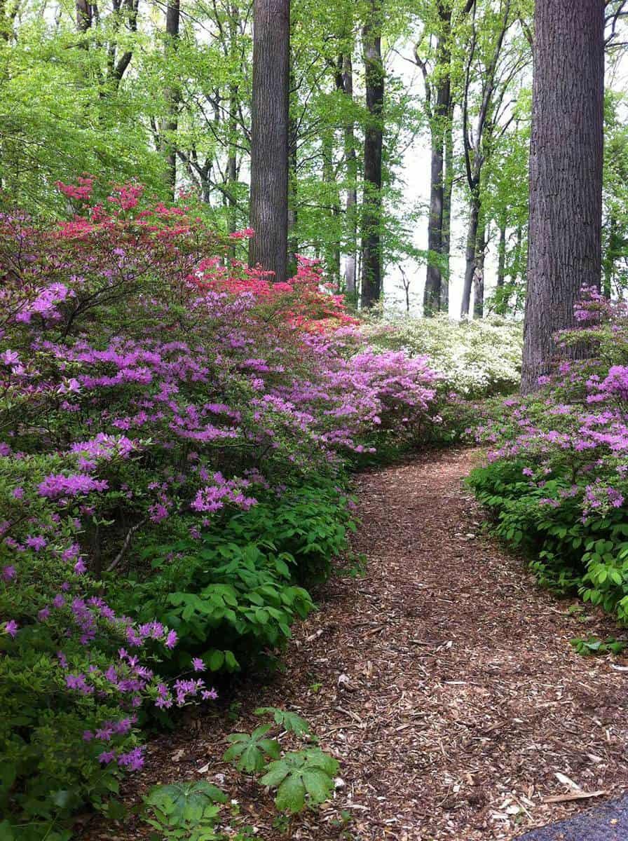Colorful spring garden floral scene