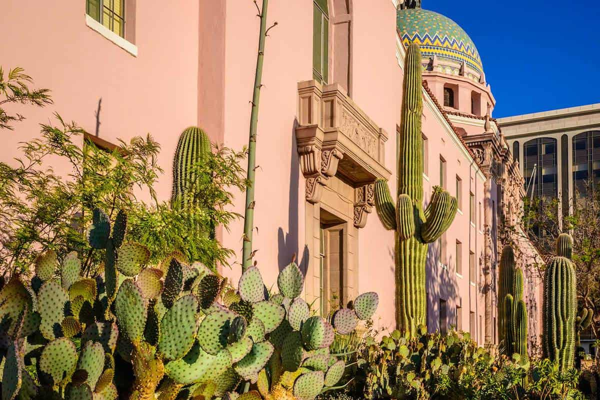 County courthouse desert cactus landscaping