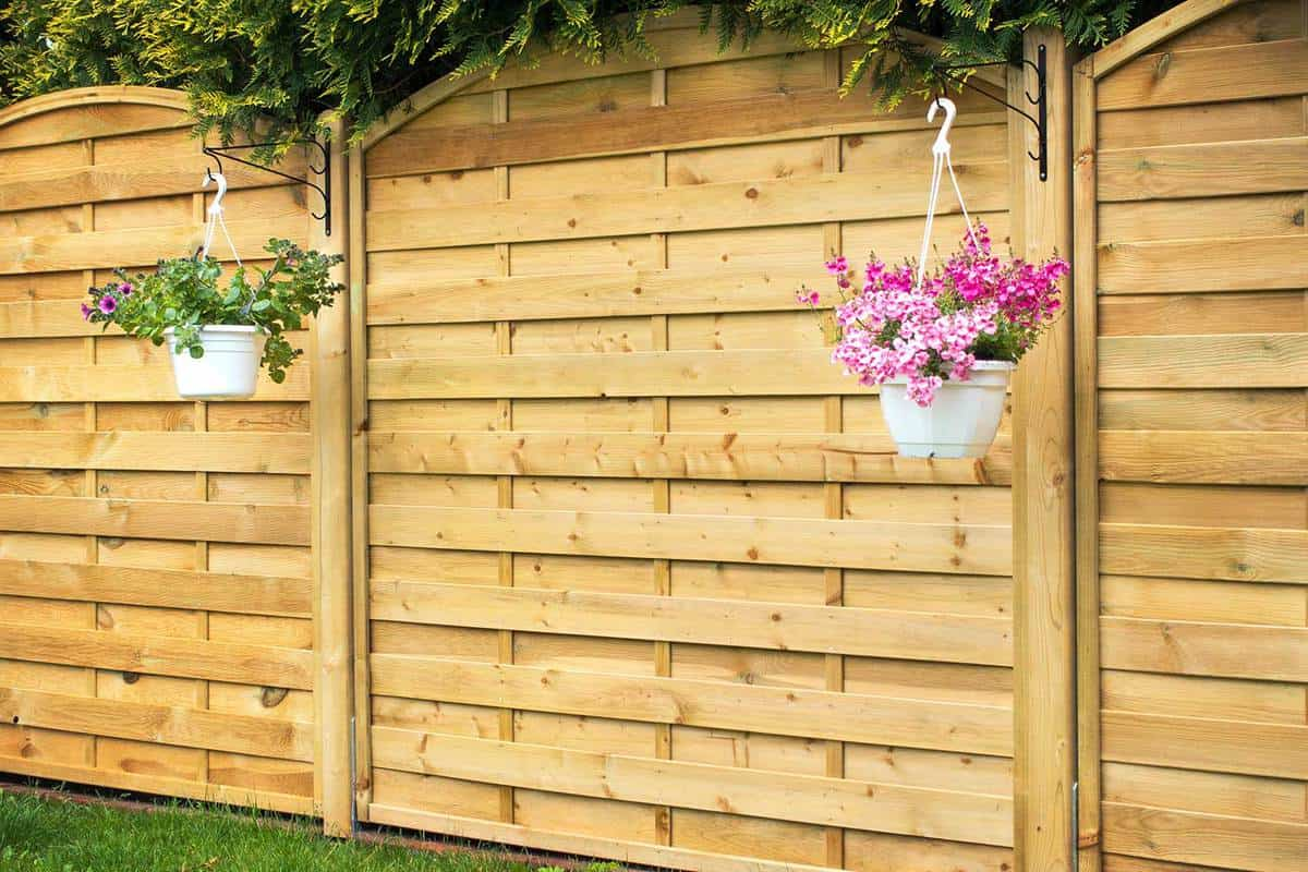 Fence panel with two white hanging flower pots
