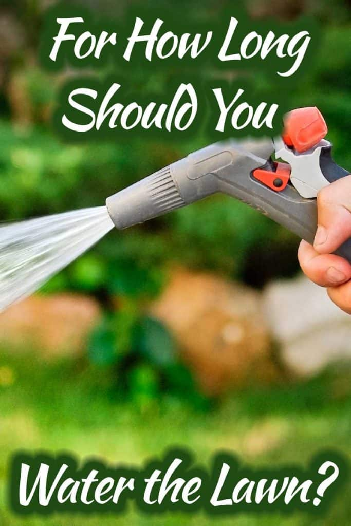 For How Long Should You Water the Lawn?