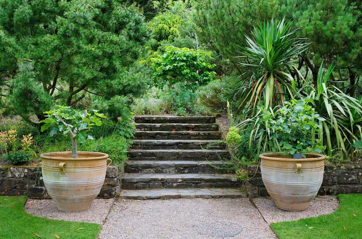 Formal garden with large flowerpots