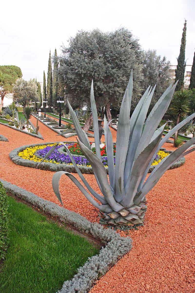Haifa gardens