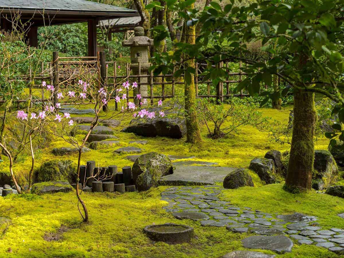 Japanese garden with green mossy stone steps