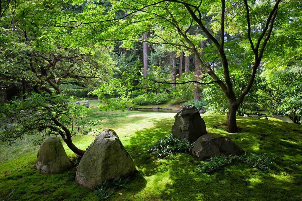 Mossy memorial garden