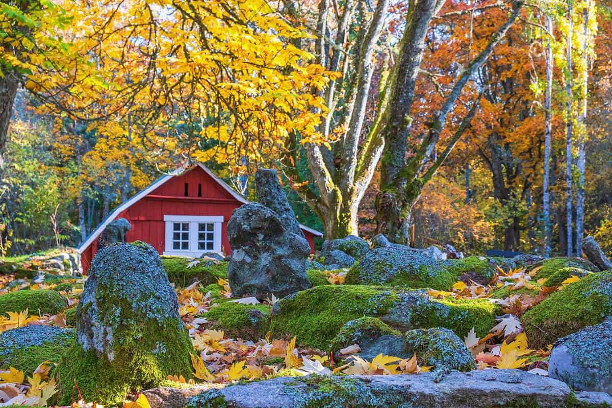 Red shed in a park during autumn
