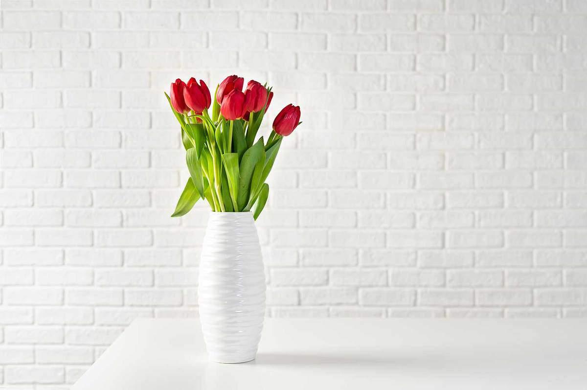 Red-tulips-in-white-vase-against-white-bricks