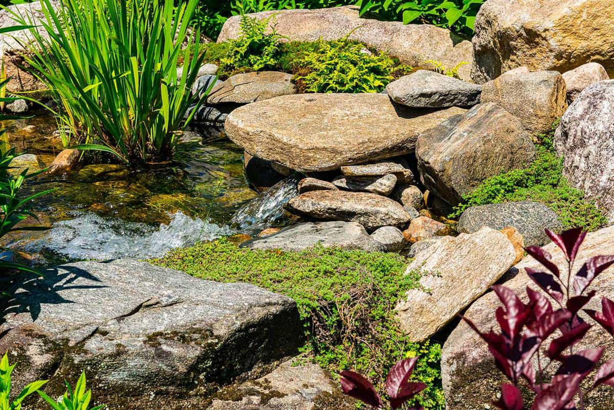 Small streams mowing between rocks