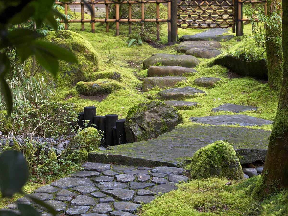 Stone steps fence at japanese garden