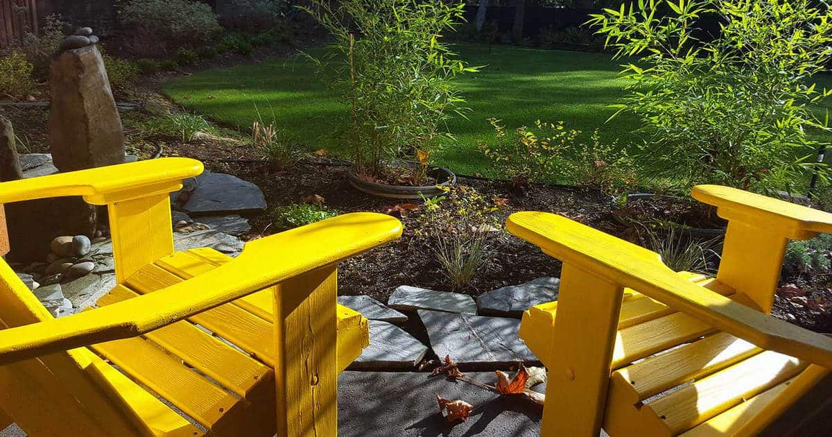 Two yellow chairs in a grass yard