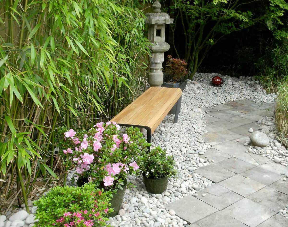 View down a garden path