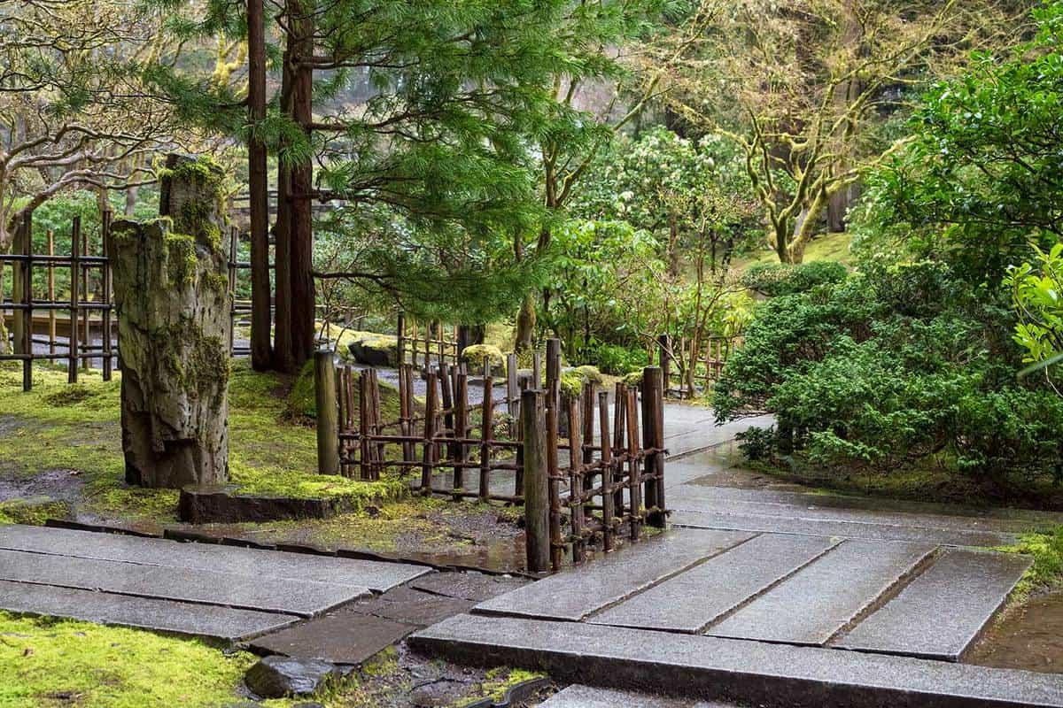 Walkways lush growth fence