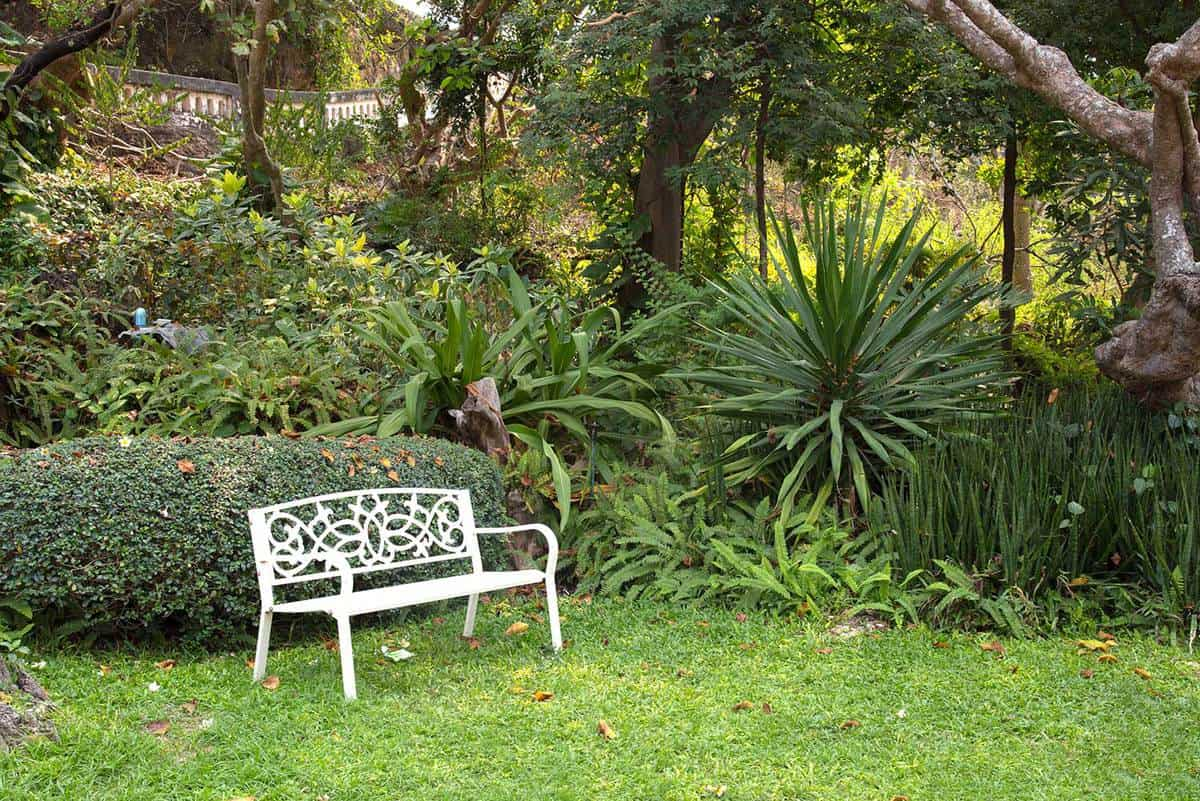 White chair stand alone in green garden