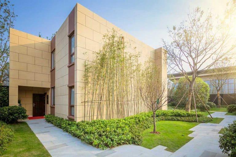 53 Bamboo Garden Ideas That Will Inspire You