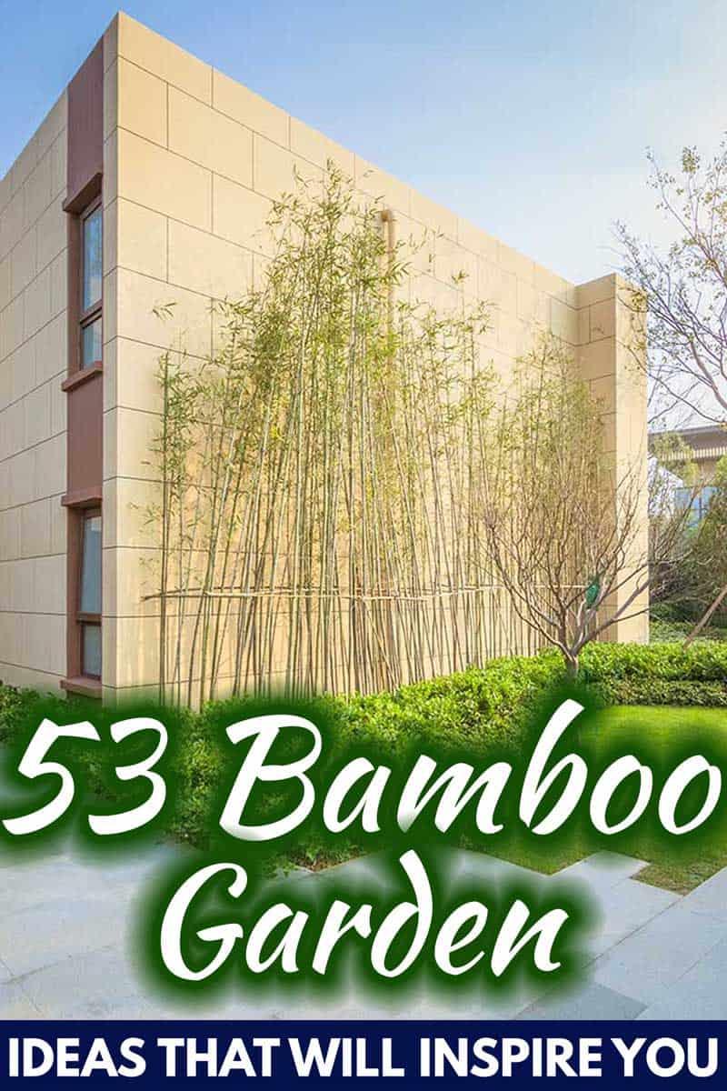 53 Bamboo Garden Ideas That Will Inspire You Garden Tabs