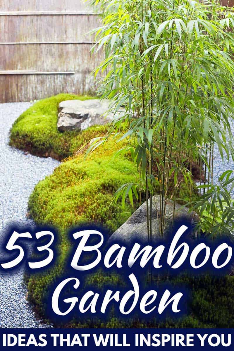 53 Bamboo Garden Ideas That Will Inspire You Garden Tabs