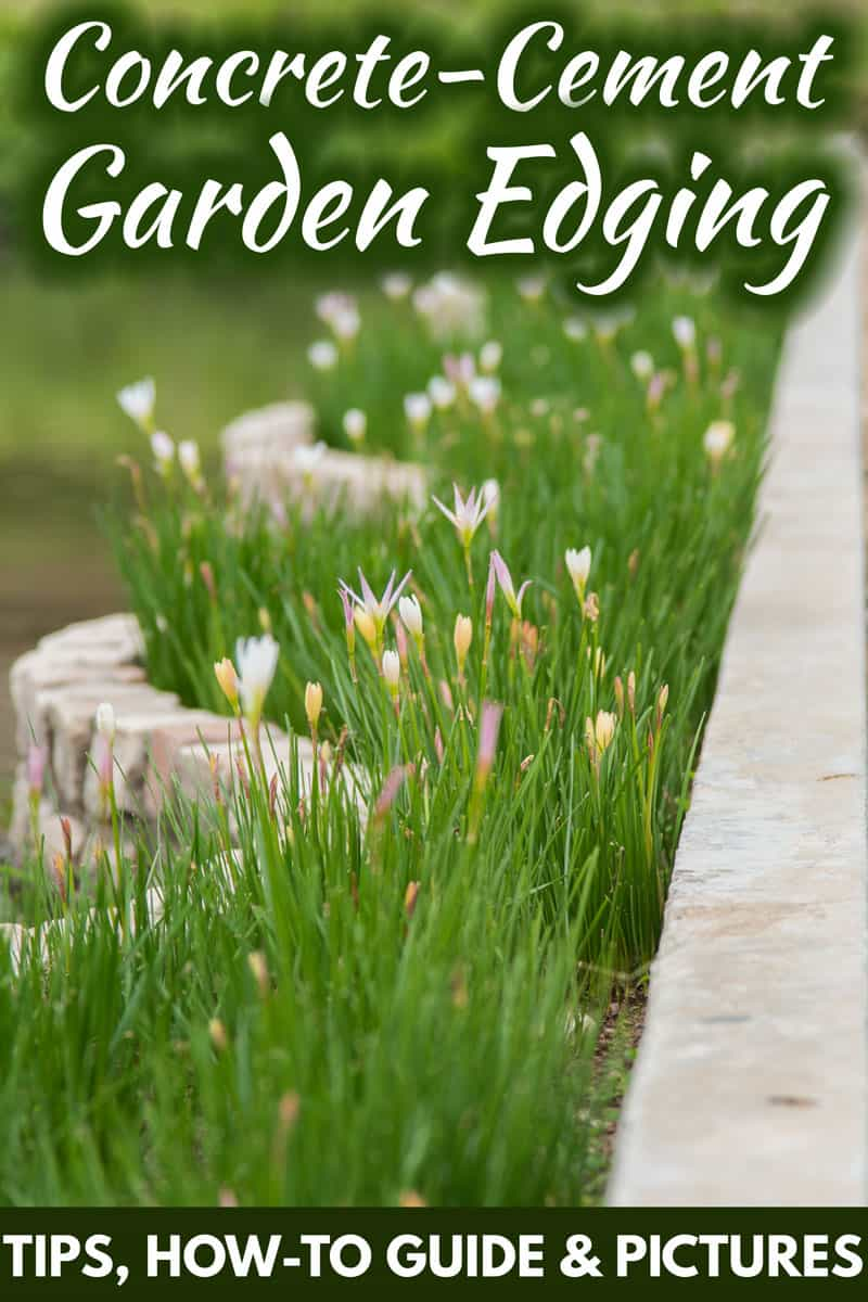 Concrete And Cement Garden Edging Tips How To Guide Pictures Garden Tabs