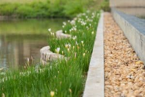 Read more about the article Concrete and Cement Garden Edging [Tips, How-To Guide & Pictures]