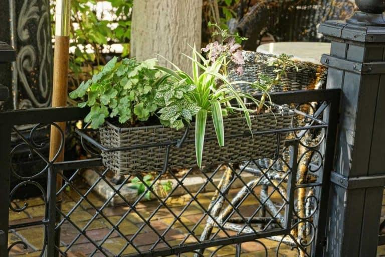 29 Gorgeous Fence Planter Box Ideas