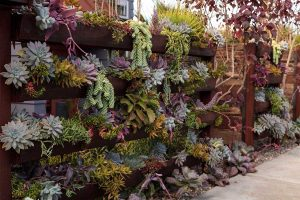 60+ Vertical Gardening Designs (Inspiration Photo Post)