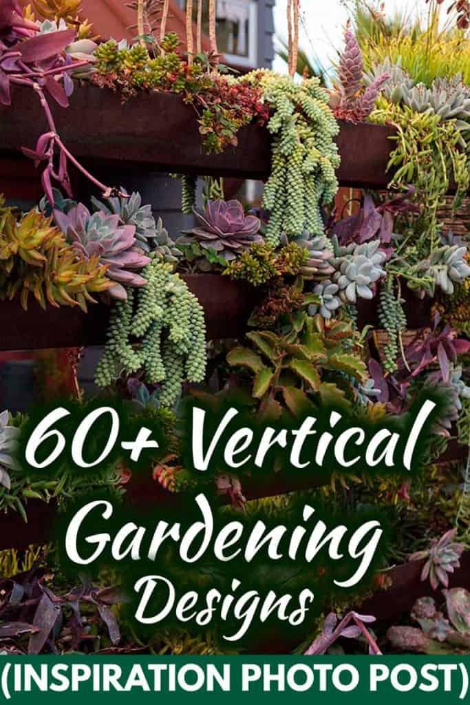 60+ Vertical Gardening Designs (Inspiration Photo Post)