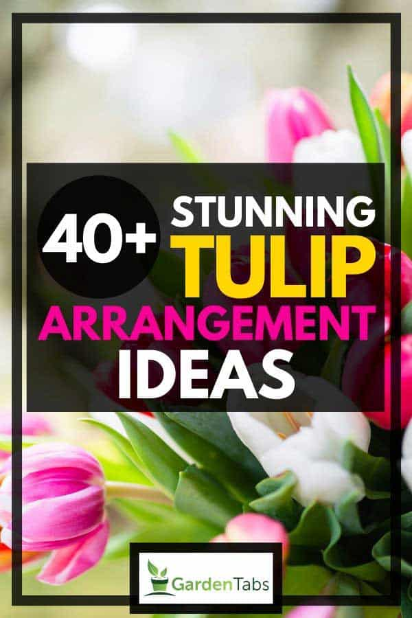 40+ Stunning Tulip Arrangement Ideas