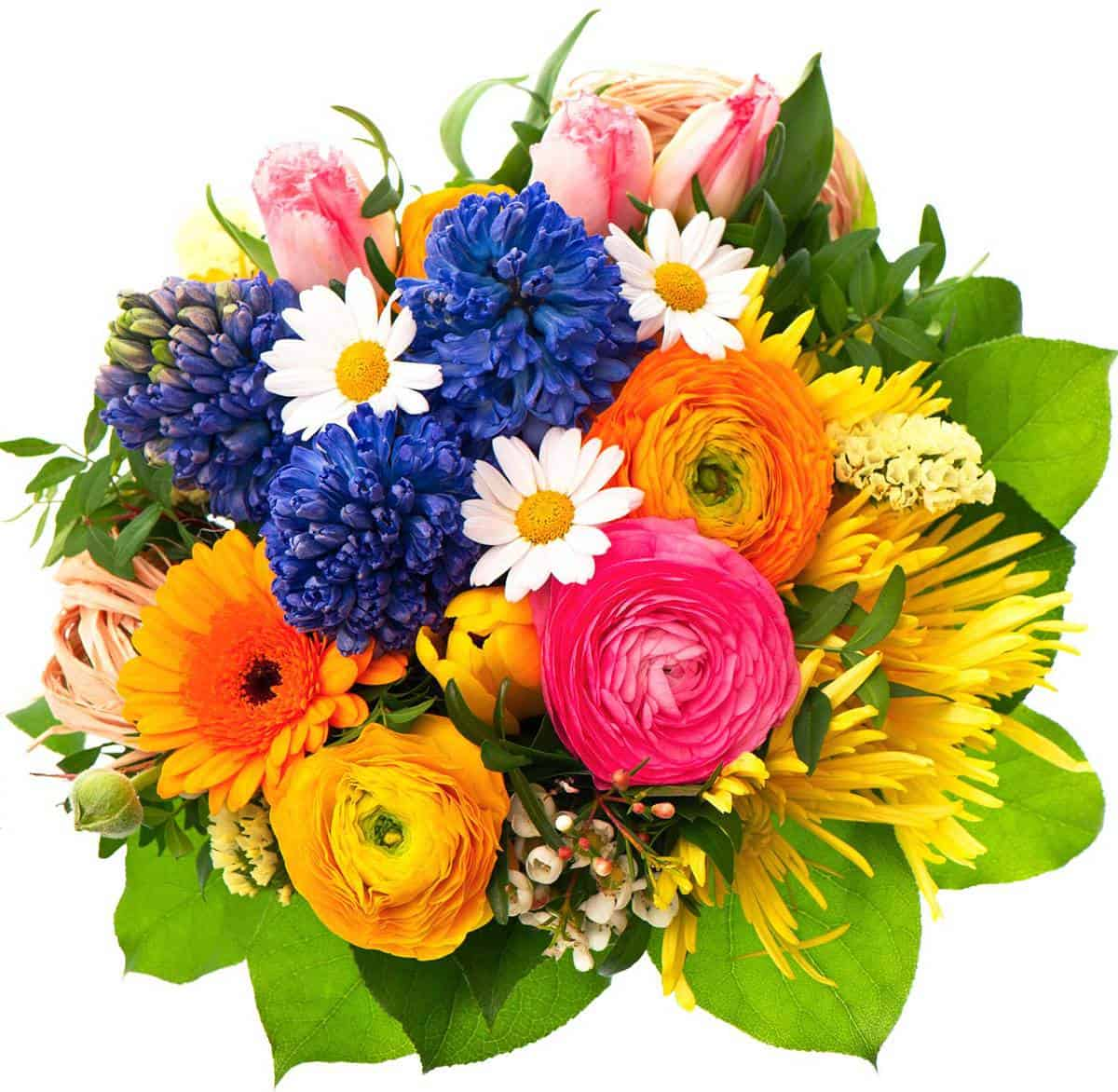 Colorful tulip bouquet arrangement