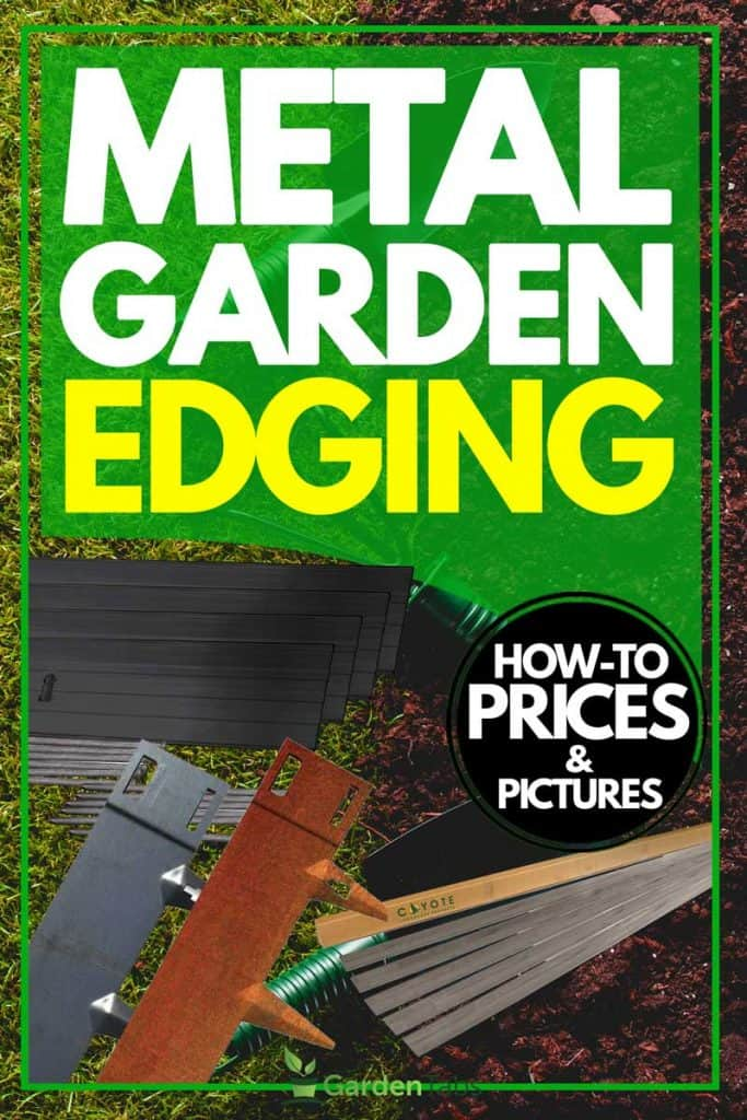 Metal garden edging [How to, Prices and Pictures]