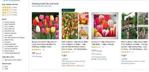 Amazon website product page for tulip bulbs