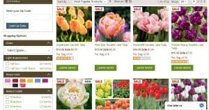 American Meadows website product page for tulip bulbs