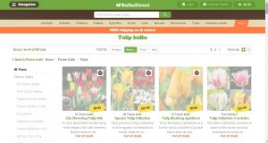 Bulbs Direct website product page for tulip bulbs