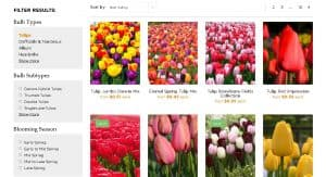 Dutch Grown website product page for tulip bulbs
