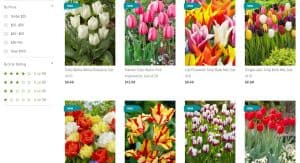 Gardener's Supply Company website product page for tulip bulbs