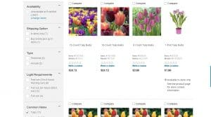 Lowe's website product page for tulip bulbs