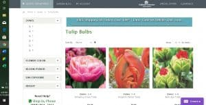 Nature Hills Nursery website product page for tulip bulbs