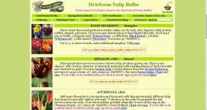 Old House Gardens website product page for tulip bulbs