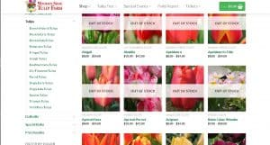 Wooden Shoe Tulip Farm website product page for tulip bulbs
