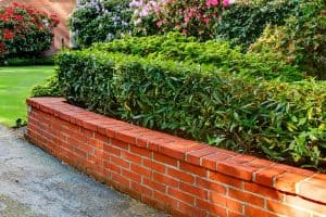 Brick Garden Edging [Ideas, Tips and Pictures!]