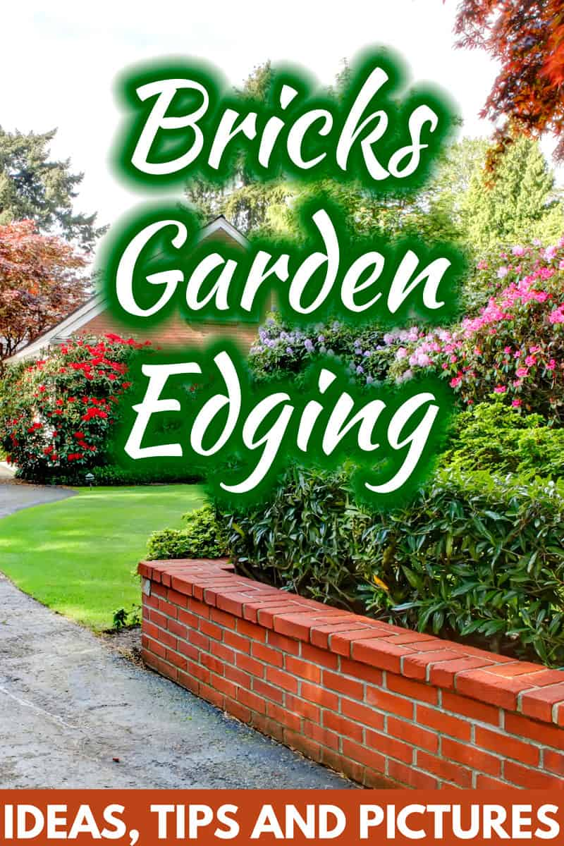 Brick Garden Edging Ideas Tips And
