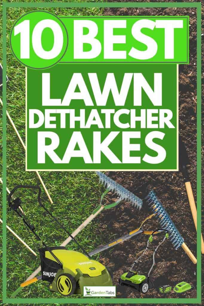 10 Best Lawn Dethatcher Rakes