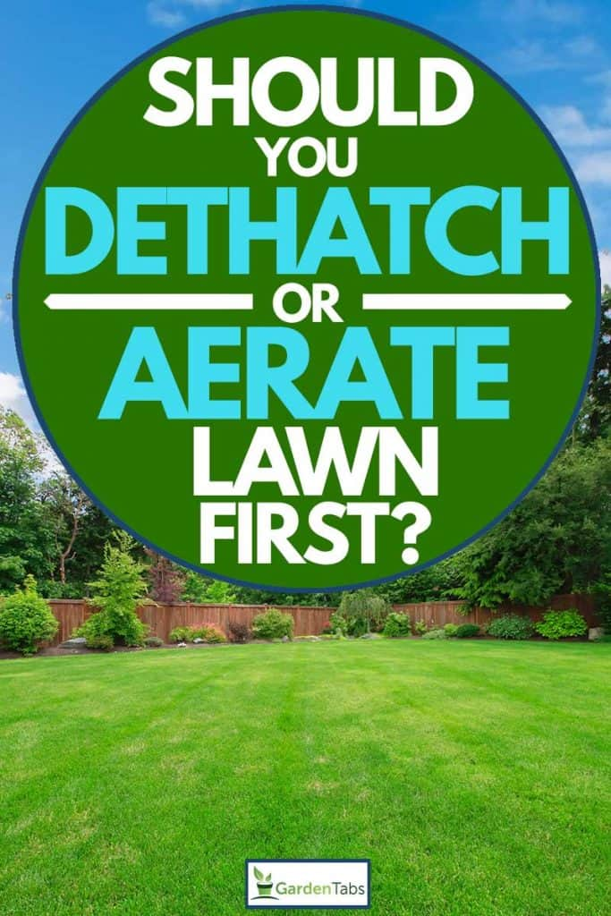 Should You Dethatch Or Aerate Lawn First Garden Tabs