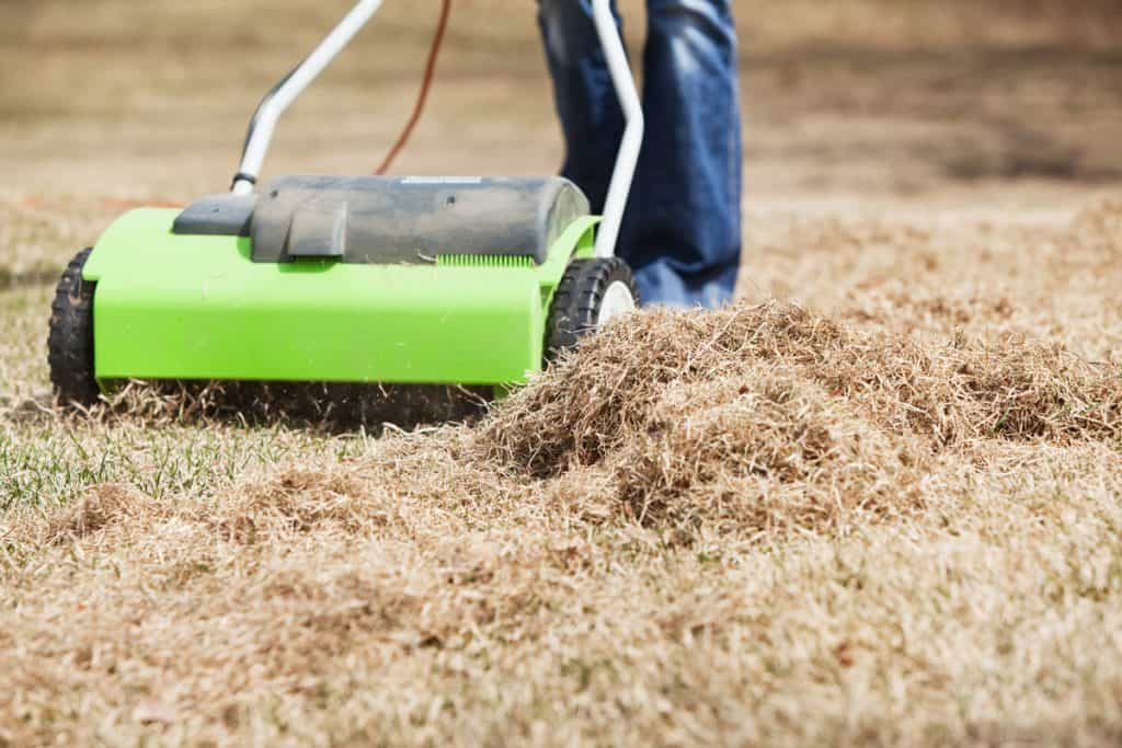 A man using an electric power rake to clean his lawn