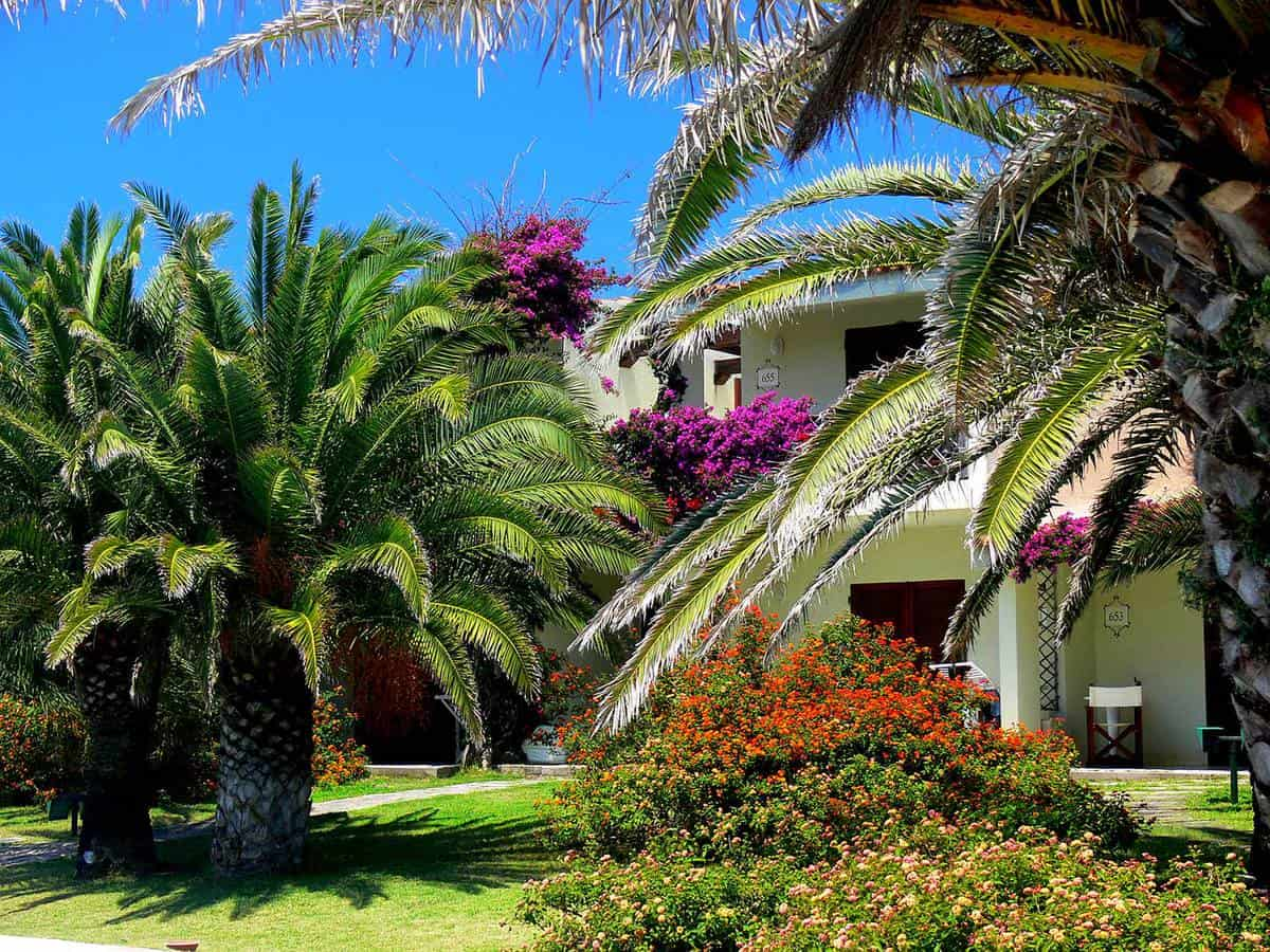 Apartment with flowers and palm trees in the mediterranean garden
